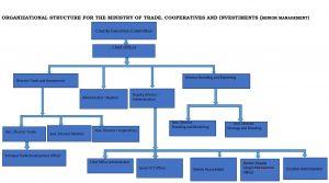 Ministry of Trade, Cooperatives and Investment - Organogram